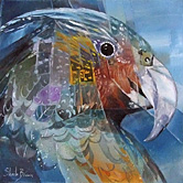 sheila brown nz native bird artist